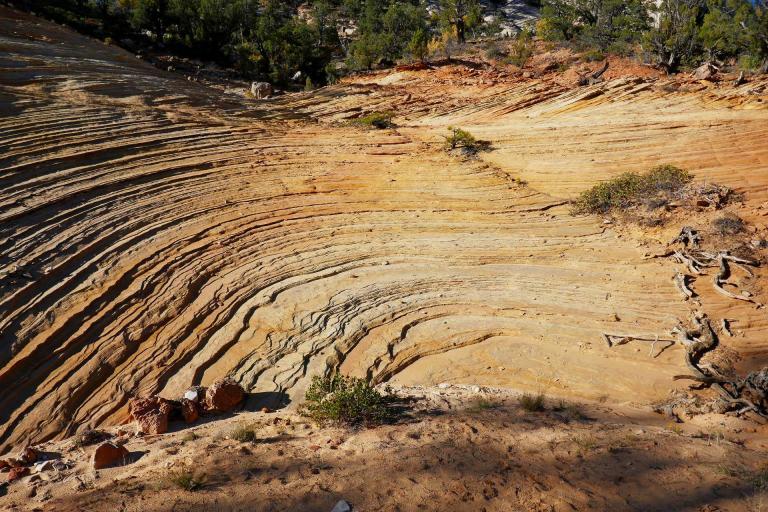 Amphithéatre naturel à Zion