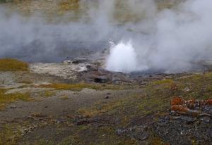 C'est un nouveau geyser,