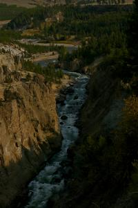 Canyon Riv. Yellowstone