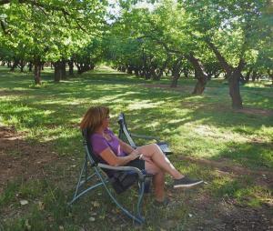 Fruita, notre camping sous les apricotier