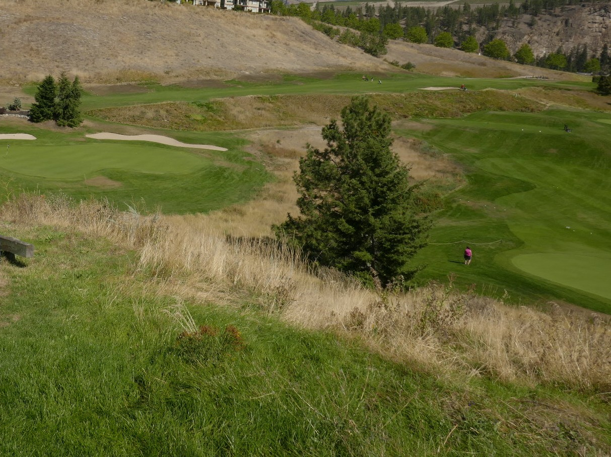Golf Pinacle Galagher Canyon