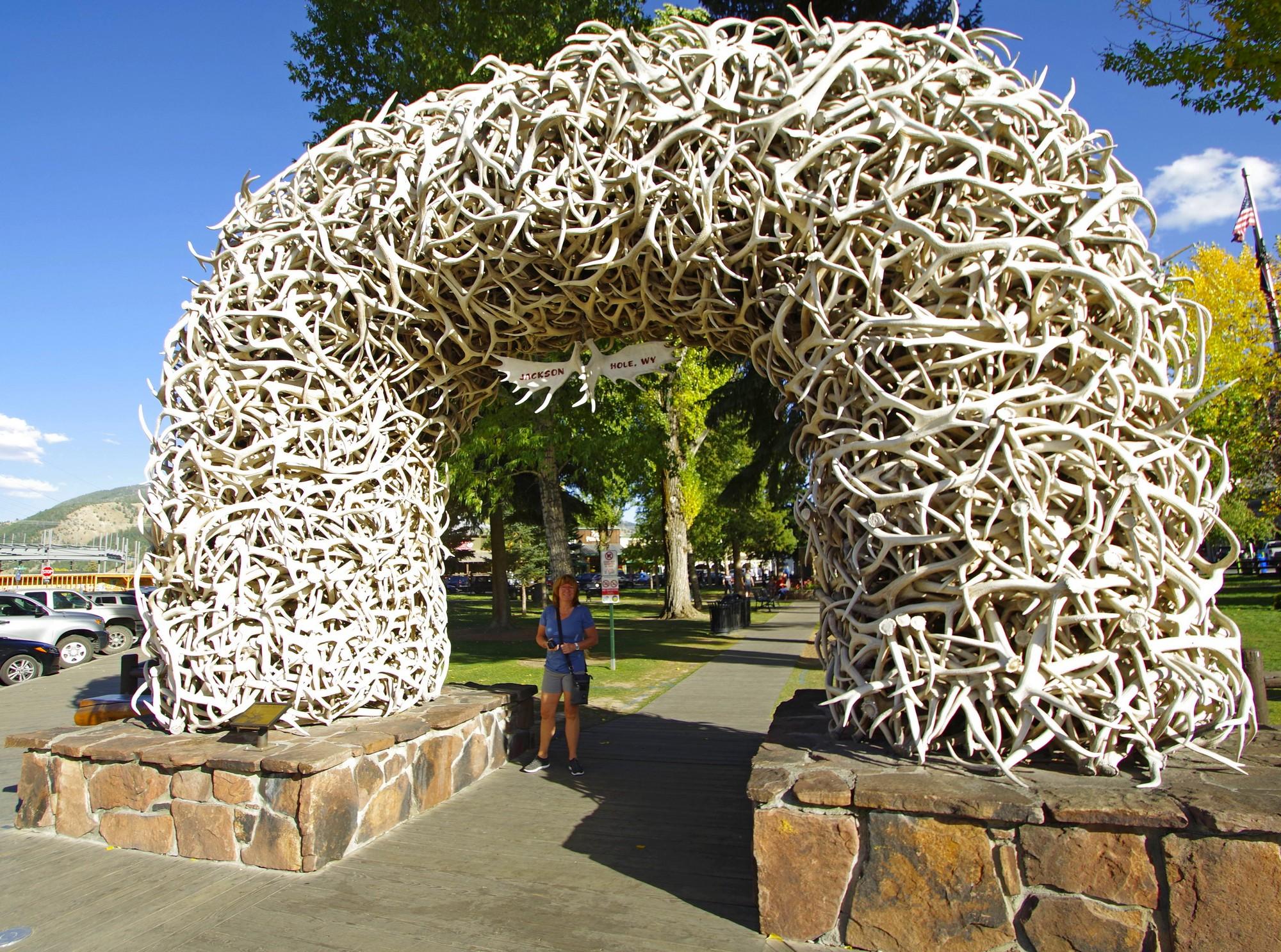 Jackson , arche en bois de caribou