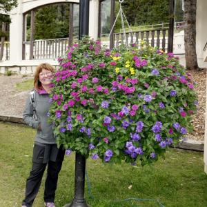 jaja dans les fleurs