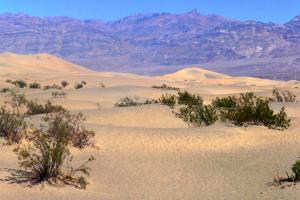 Le Sahara , non dune de Mesquite Death Valley