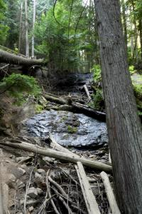 Liberty Lake  ruisseau en montagne