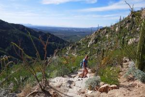 Randonnée dans le canyon au Catalina SP