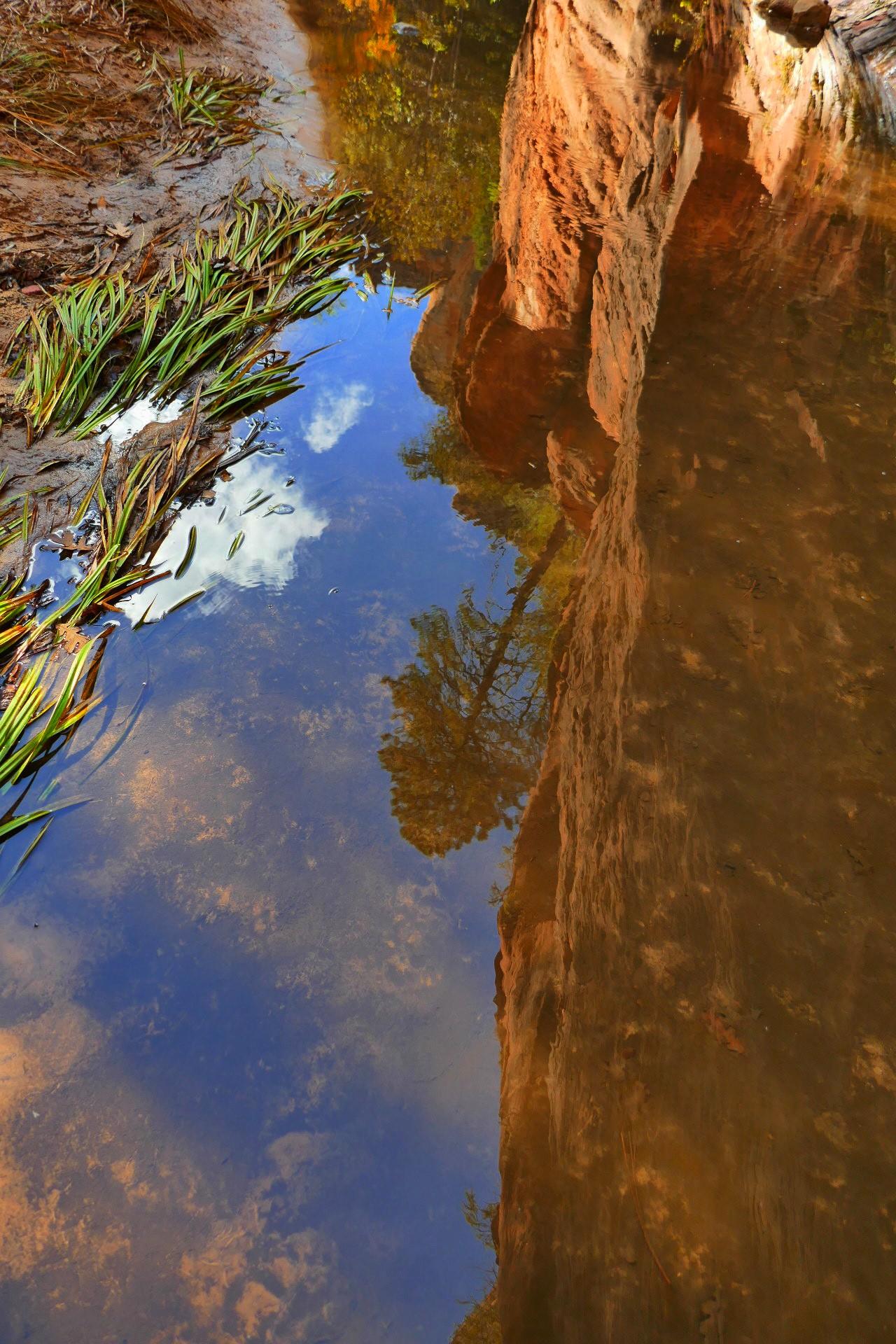 Réflection sur l'eau