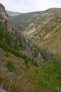 Rivière Yellowstone  du mont Bunsen
