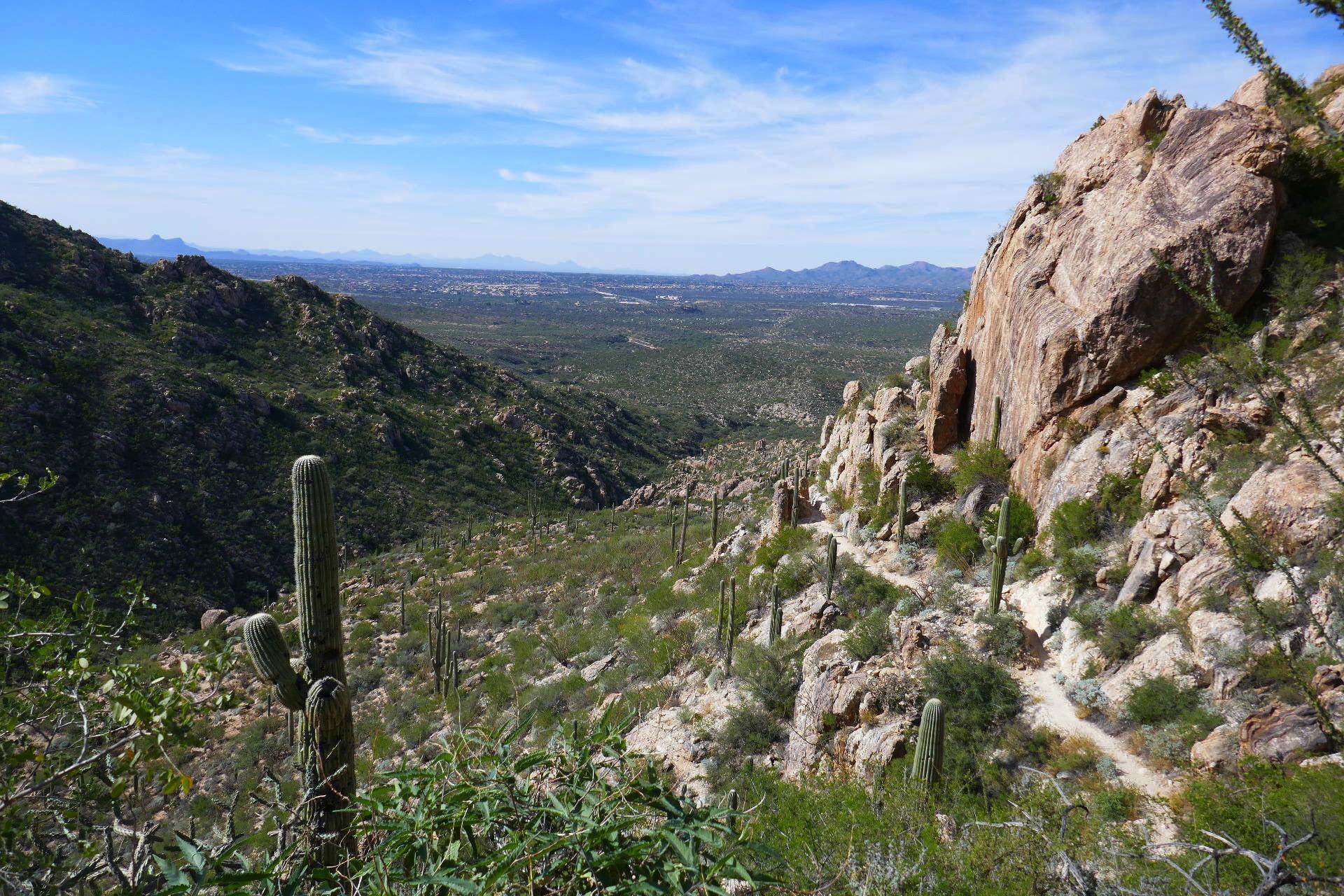 Romano Canyon et vue de Tucson