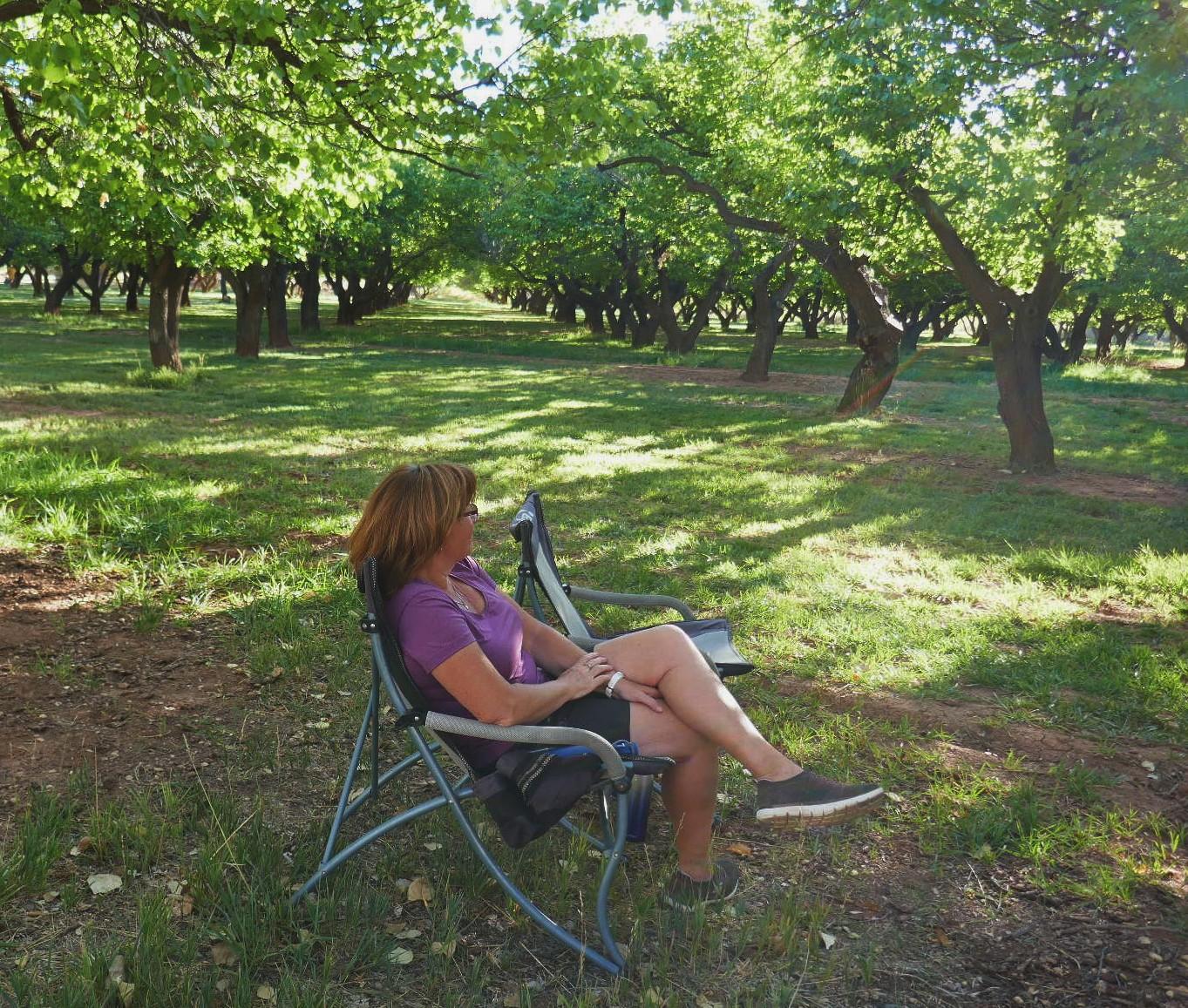Fruita notre camping sous les apricotier