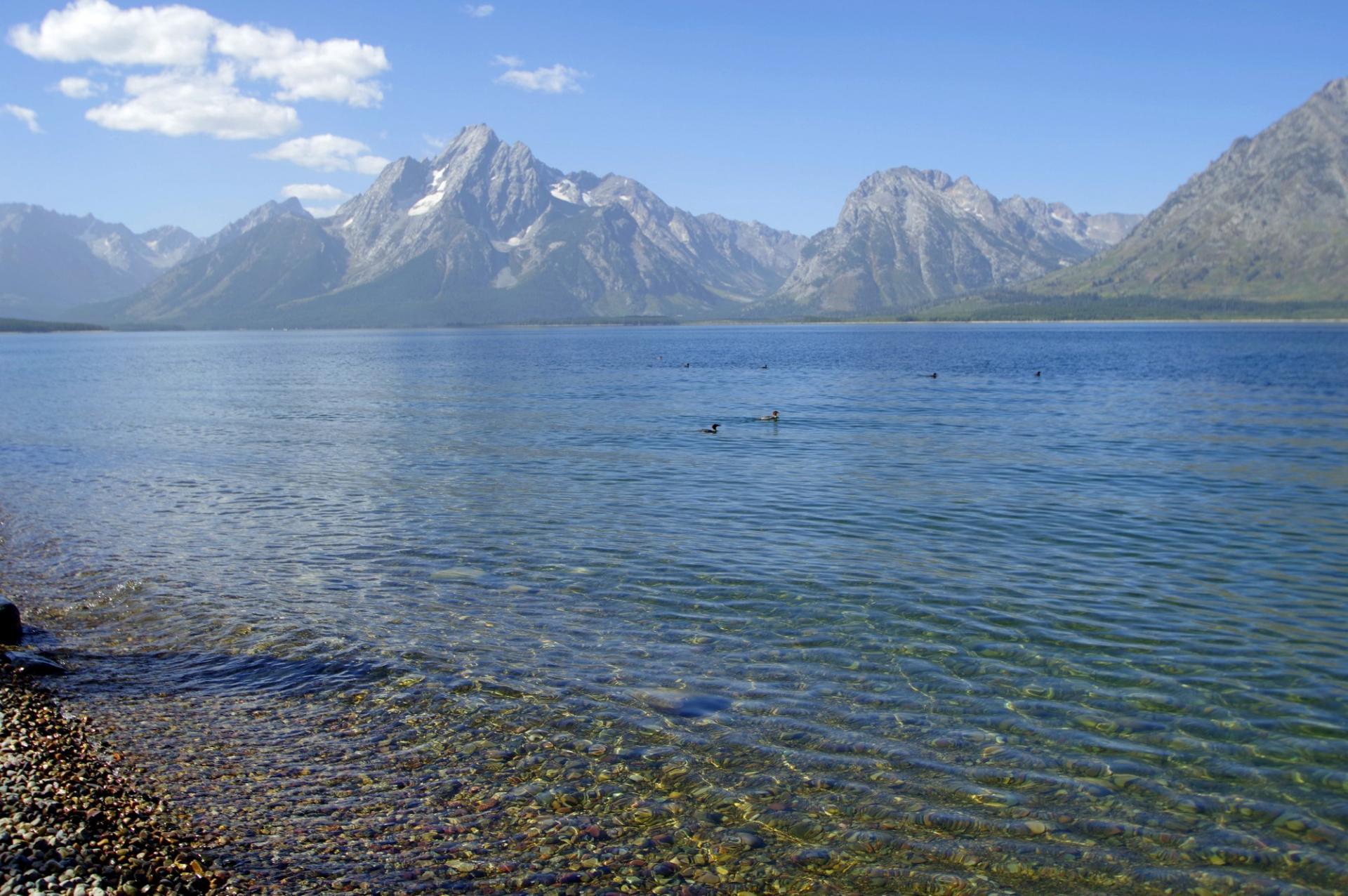 Lac Jackson et les Mont Teton