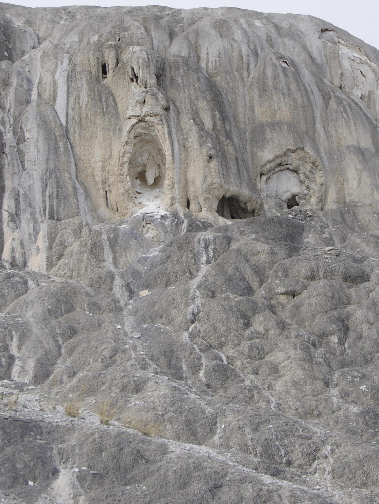 J'ai trouver le fantôme de Yellowstone