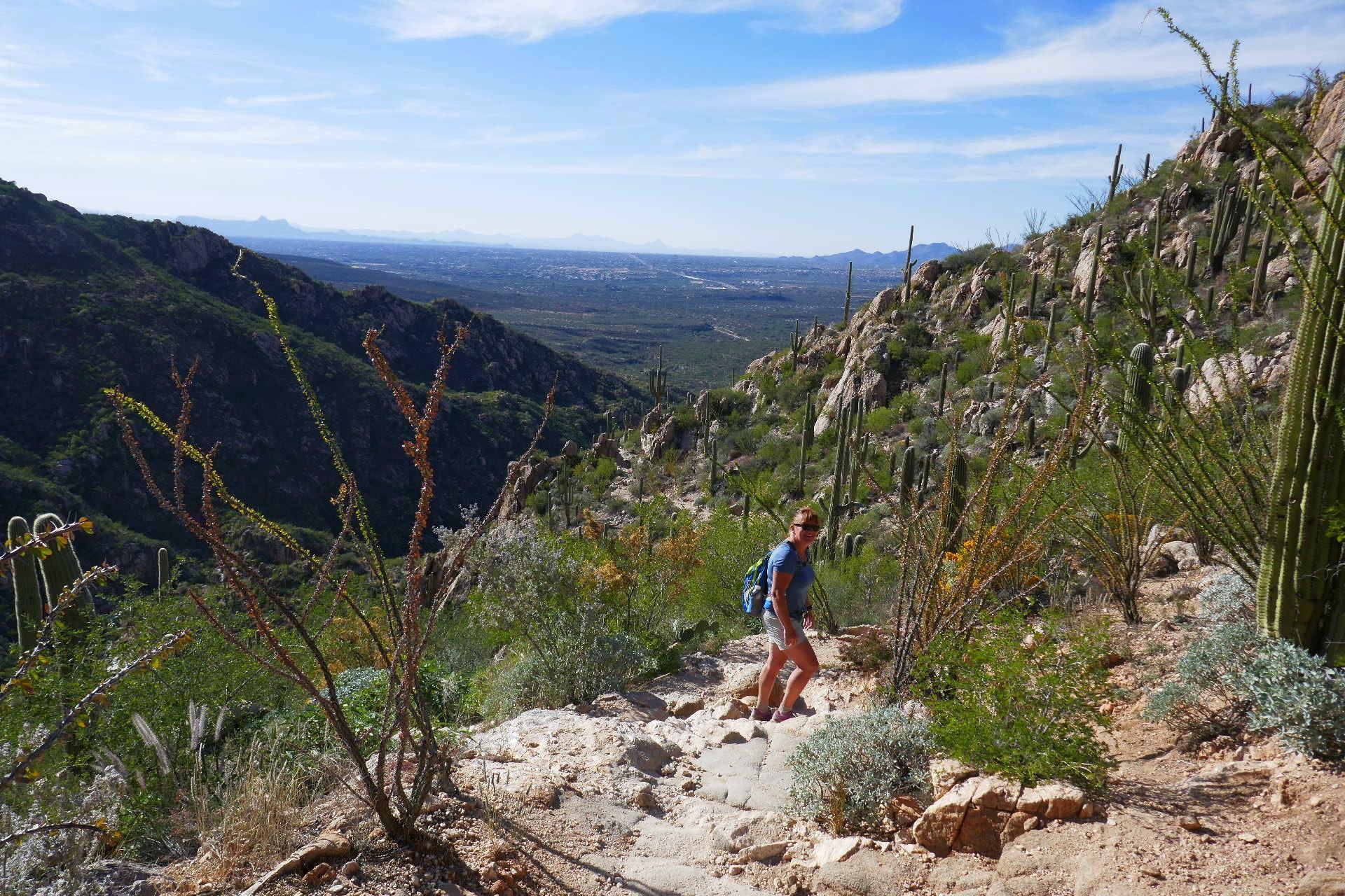 Randonnee dans le canyon  Romano au Catalina SP